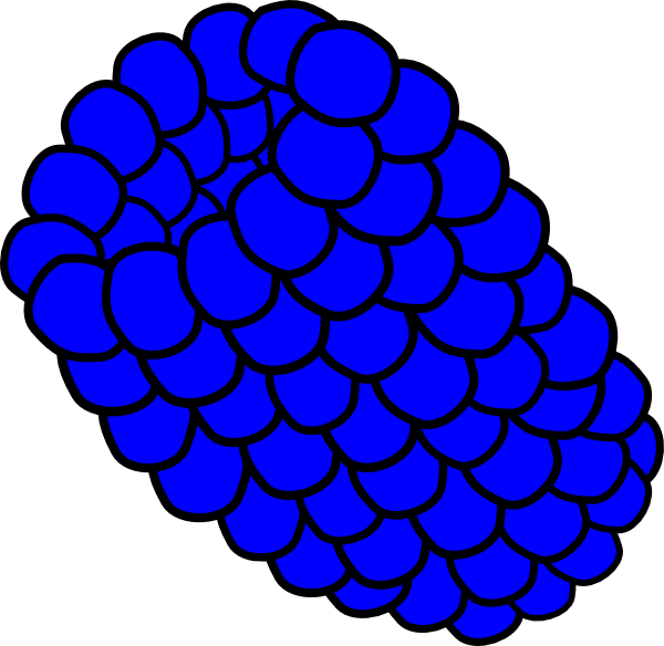 Clip art at clker. Blueberry clipart blue raspberry