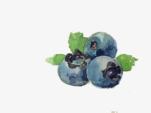 Blueberry hand painted watercolor. Blueberries clipart cartoon