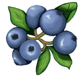Blueberries clipart huckleberry.  collection of blueberry