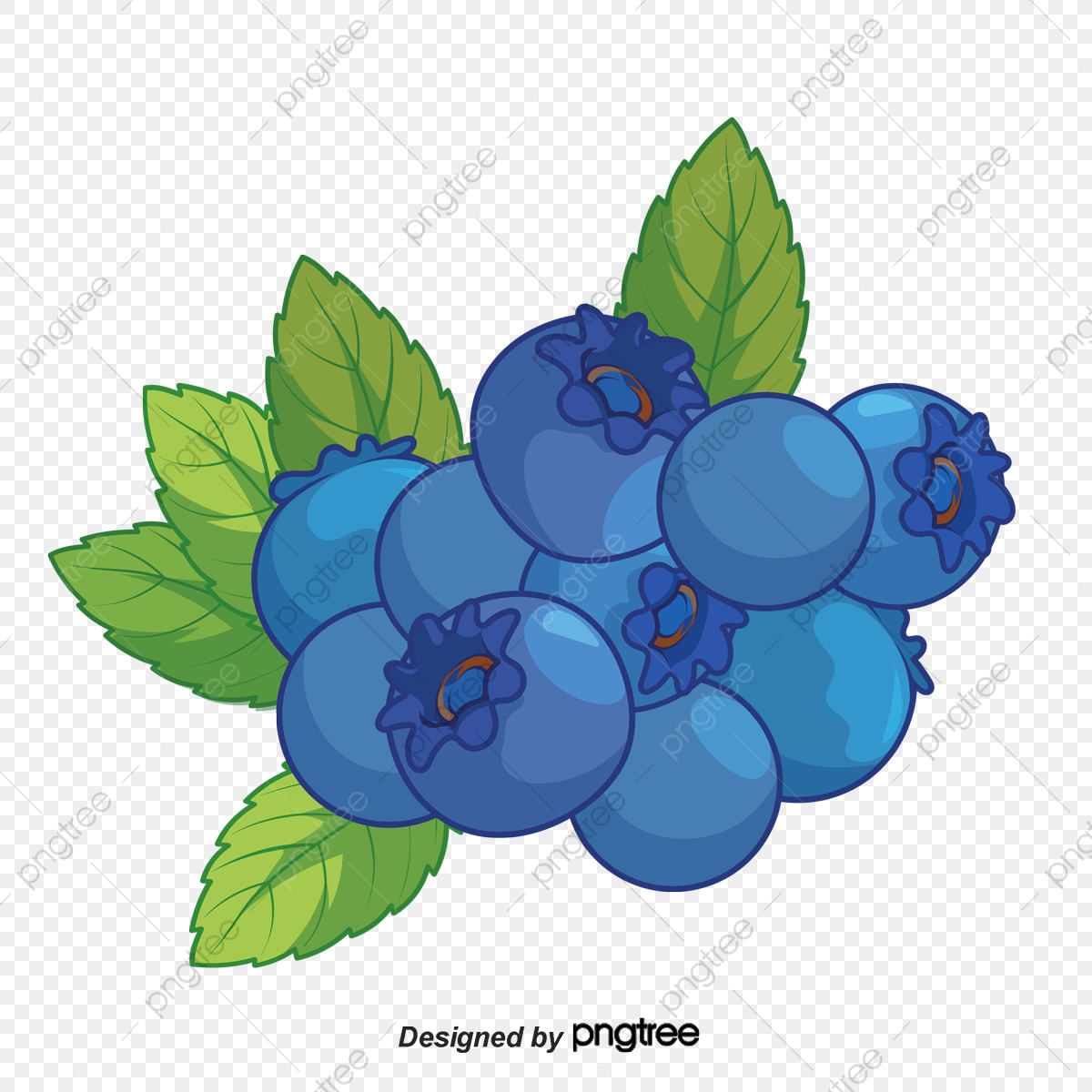 Fruit food png transparent. Blueberry clipart blueberry tree