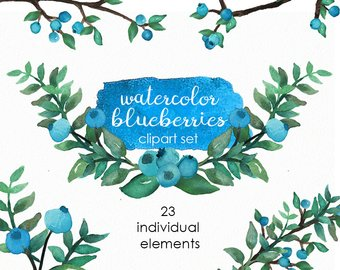Etsy clip art watercolor. Blueberry clipart branch