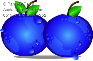 Stock photography acclaim images. Blueberry clipart cartoon