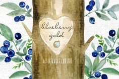 Pin by pink maiden. Blueberry clipart elderberry