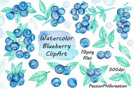 Watercolor transparent background digital. Blueberry clipart frame