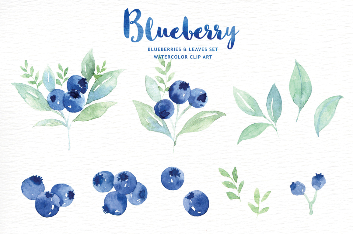 Blueberry clipart frame. Watercolor by everysunsun thehungryjpeg