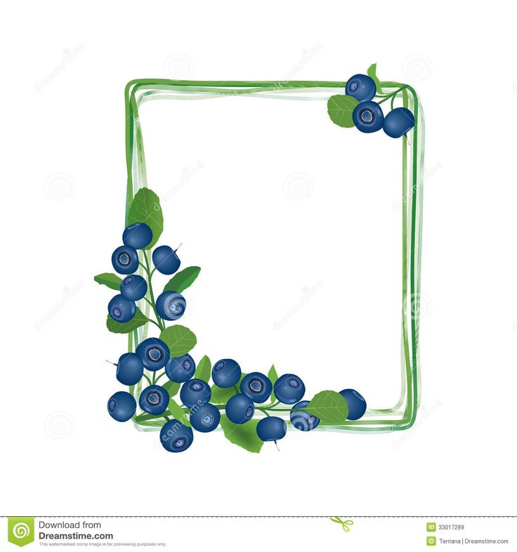 Blueberry clipart grape.  best images on