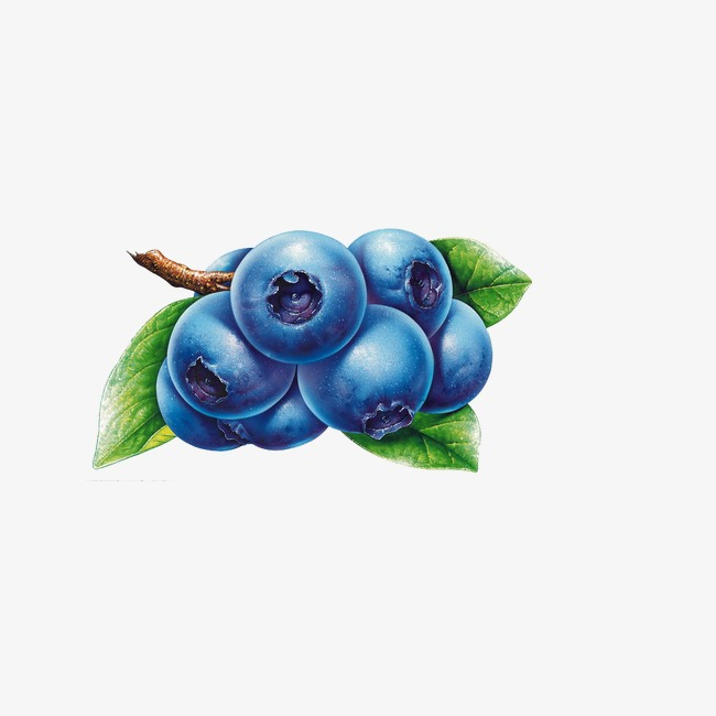 Blueberry clipart grape. Fruit png image and