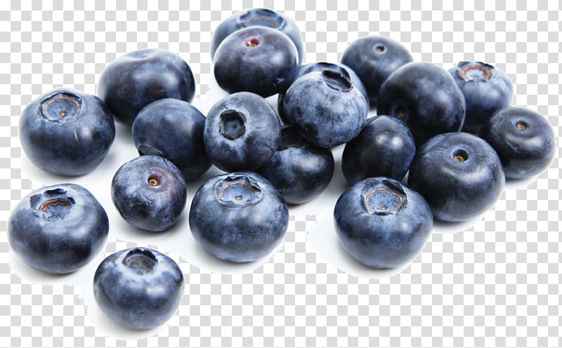 Blueberry clipart huckleberry. Bilberry juniper berry