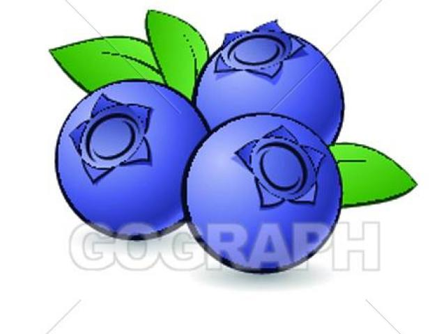 Blueberry clipart pile. Free download clip art