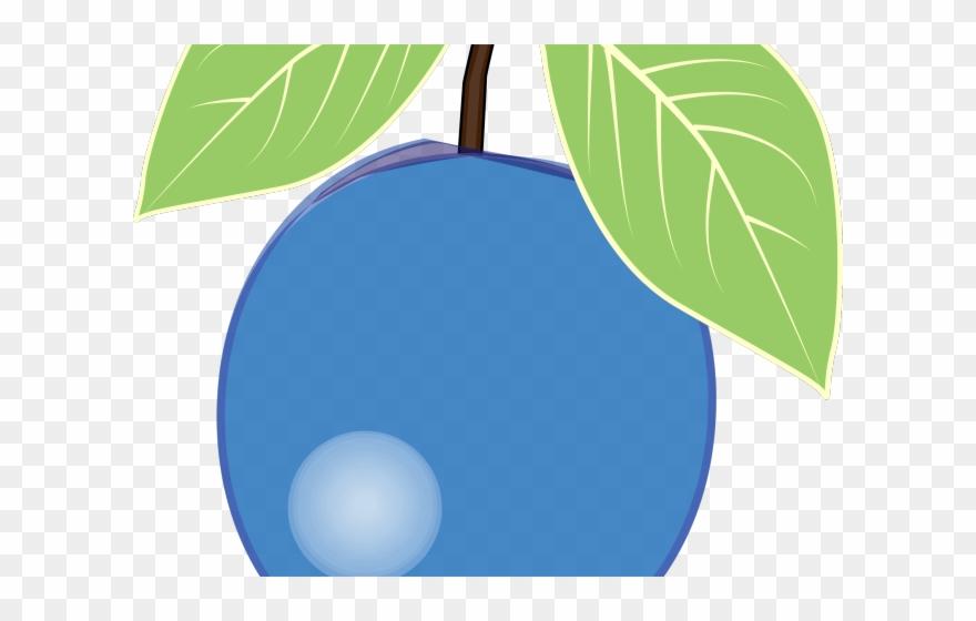 Blueberry clipart single. Plum png transparent