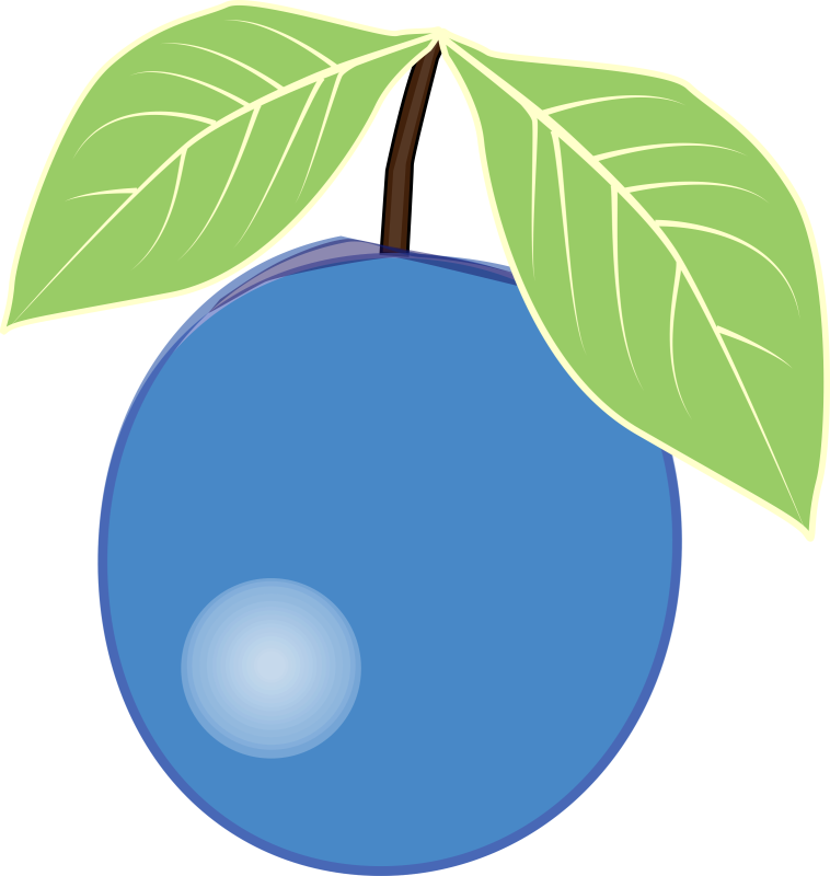 Blueberry clipart single. Ourclipart pin