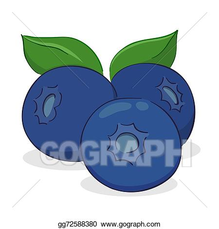 Blueberry clipart three. Vector fruit illustration