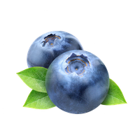 Blueberries clipart transparent background. Download blueberry free png