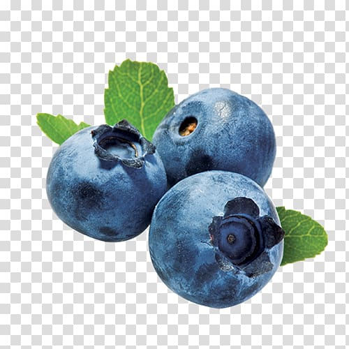 Tea smoothie fried chicken. Blueberry clipart two