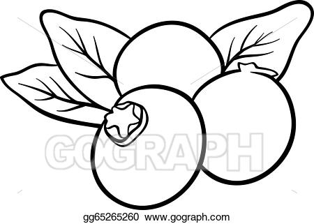 Art fruits for coloring. Blueberry clipart vector
