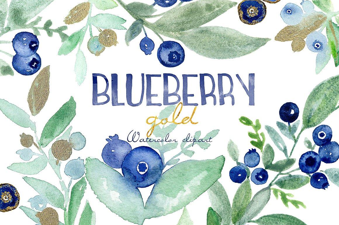 Blueberry clipart watercolor. Gold illustrations creative market