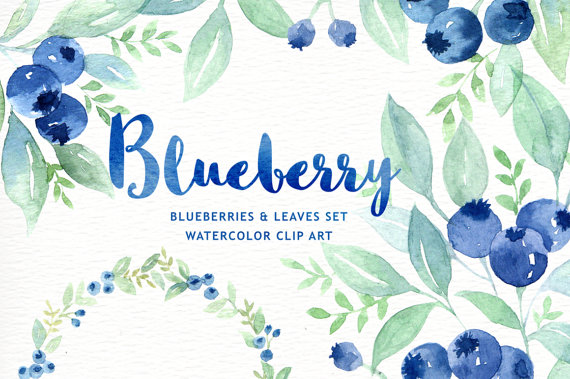 Blueberry clipart watercolor. Wreath branch