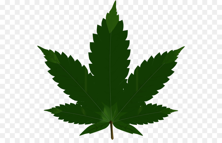 Cannabis sativa png download. Blunt clipart kush