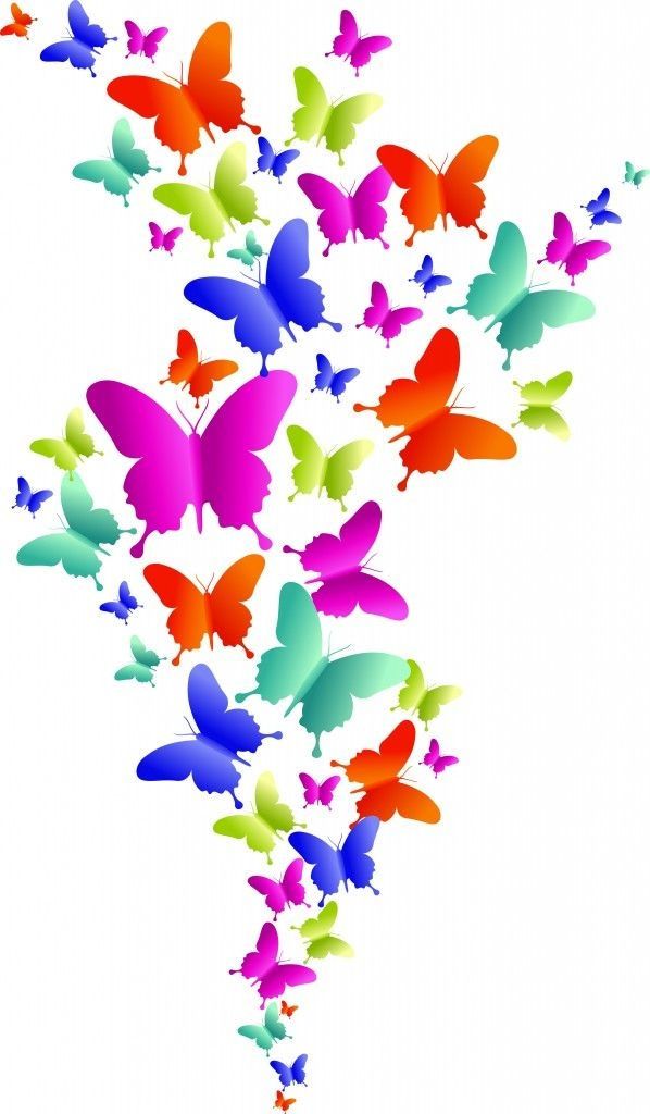 Boarder clipart butterfly. Flower and border on