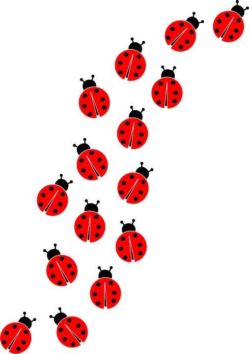 best butterflies other. Ladybugs clipart border