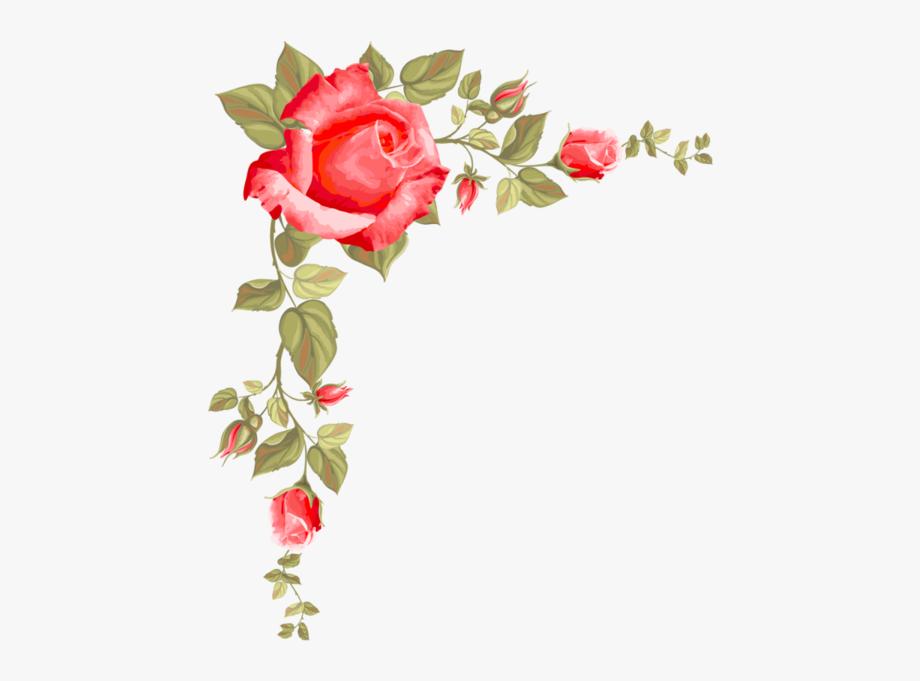 Feelings border rose on. Clipart roses boarder
