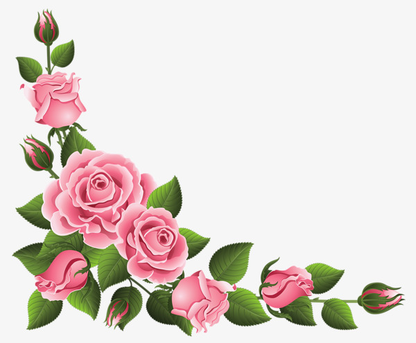 Pink border lace flowers. Boarder clipart rose