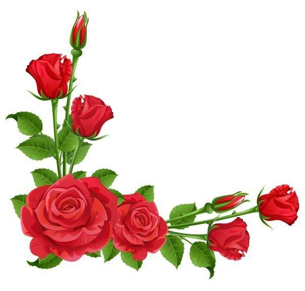 Border flower cliparts roseborderclipartpinmuseprintablesonpage. Boarder clipart rose