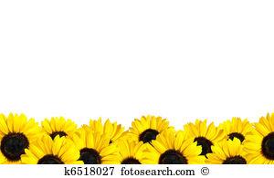 Boarder clipart sunflower. Corner border station