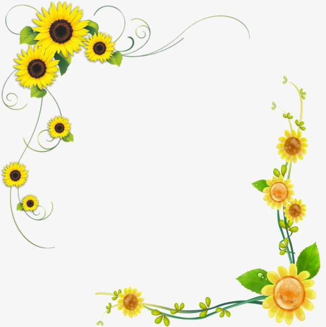 Boarder clipart sunflower. Border decorative borders flowers