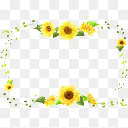 Png images download resources. Boarder clipart sunflower
