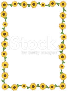 Free page borders for. Boarder clipart sunflower