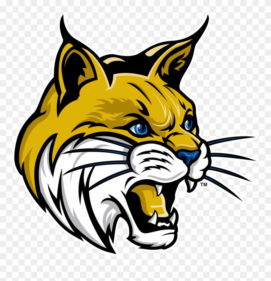 Bobcat clipart. Uc merced logo pinclipart