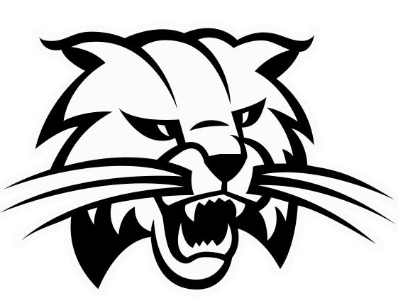 Bobcat clipart. Free cliparts download clip