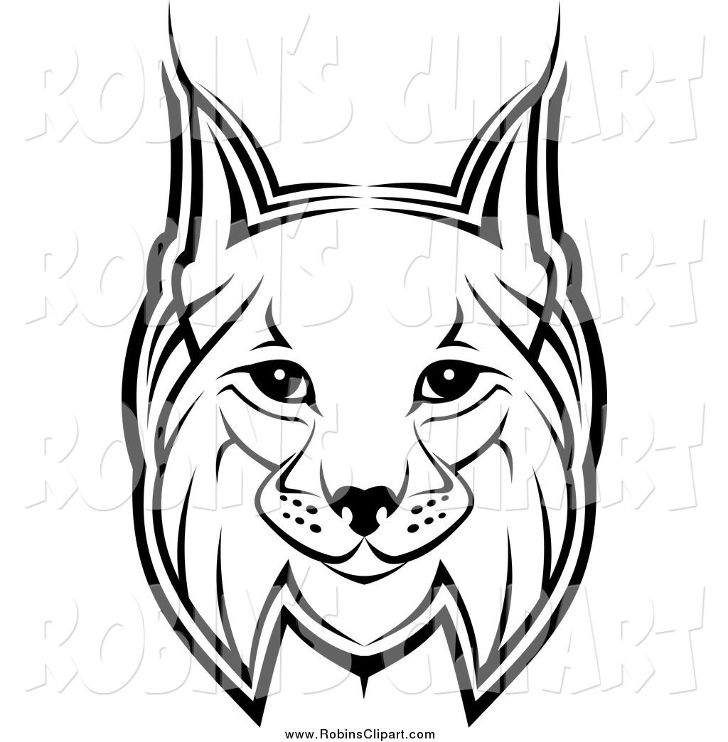 Clip art of a. Bobcat clipart black and white