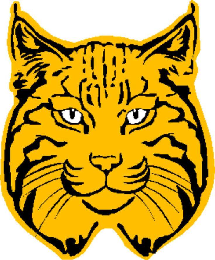 Bobcat clipart bobcat head.  best bobcats images
