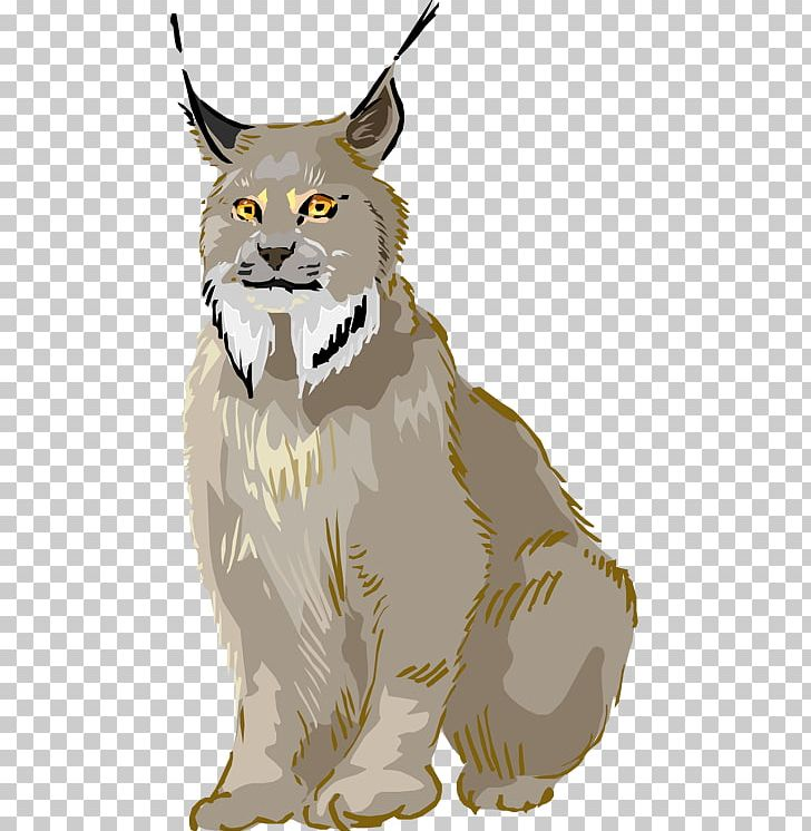 Bobcat clipart canada lynx. Eurasian whiskers png big