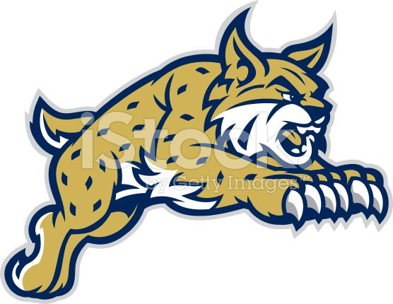 This leaping mascot is. Bobcat clipart caracal
