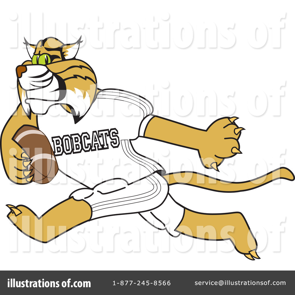 Illustration by toons biz. Bobcat clipart character