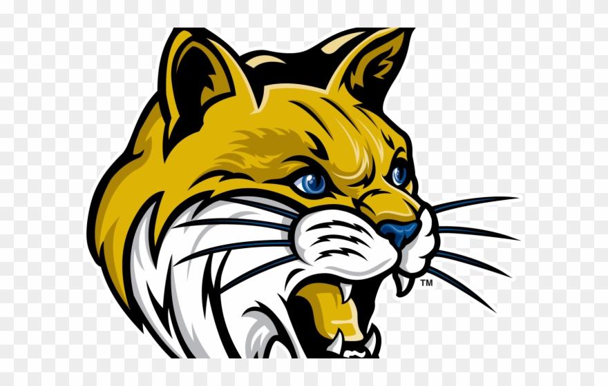 Cougar uc merced logo. Bobcat clipart clip art