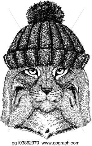 Bobcat clipart cool. Vector art wild cat