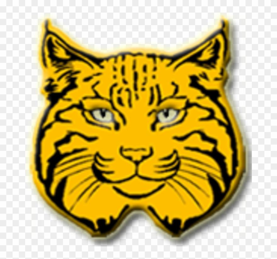 The radford bobcats defeat. Bobcat clipart cool
