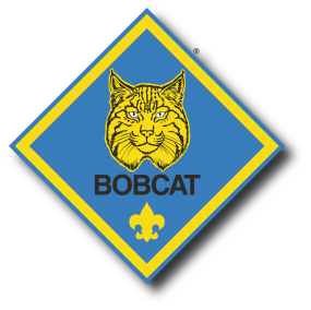 Bobcat clipart cub scout. New scouts pack website