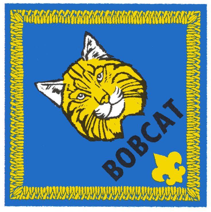 best scouts images. Bobcat clipart cub scout