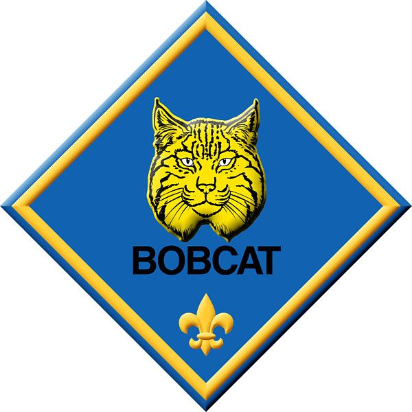 Bobcat clipart cub scout. Pin on tiger scouts