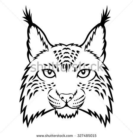 Bobcats face drawing google. Bobcat clipart draw