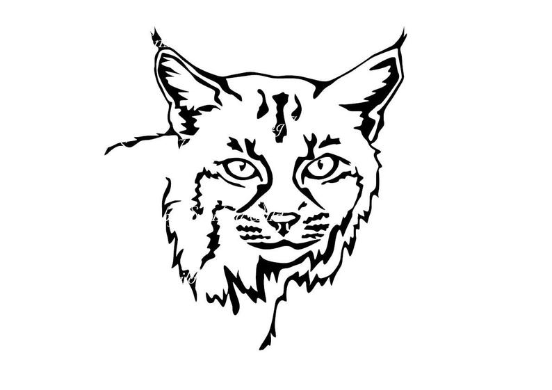 Bobcat clipart draw. Face drawing free download