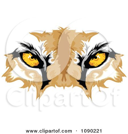 Bobcat clipart eyes. Cougar mascot royalty free