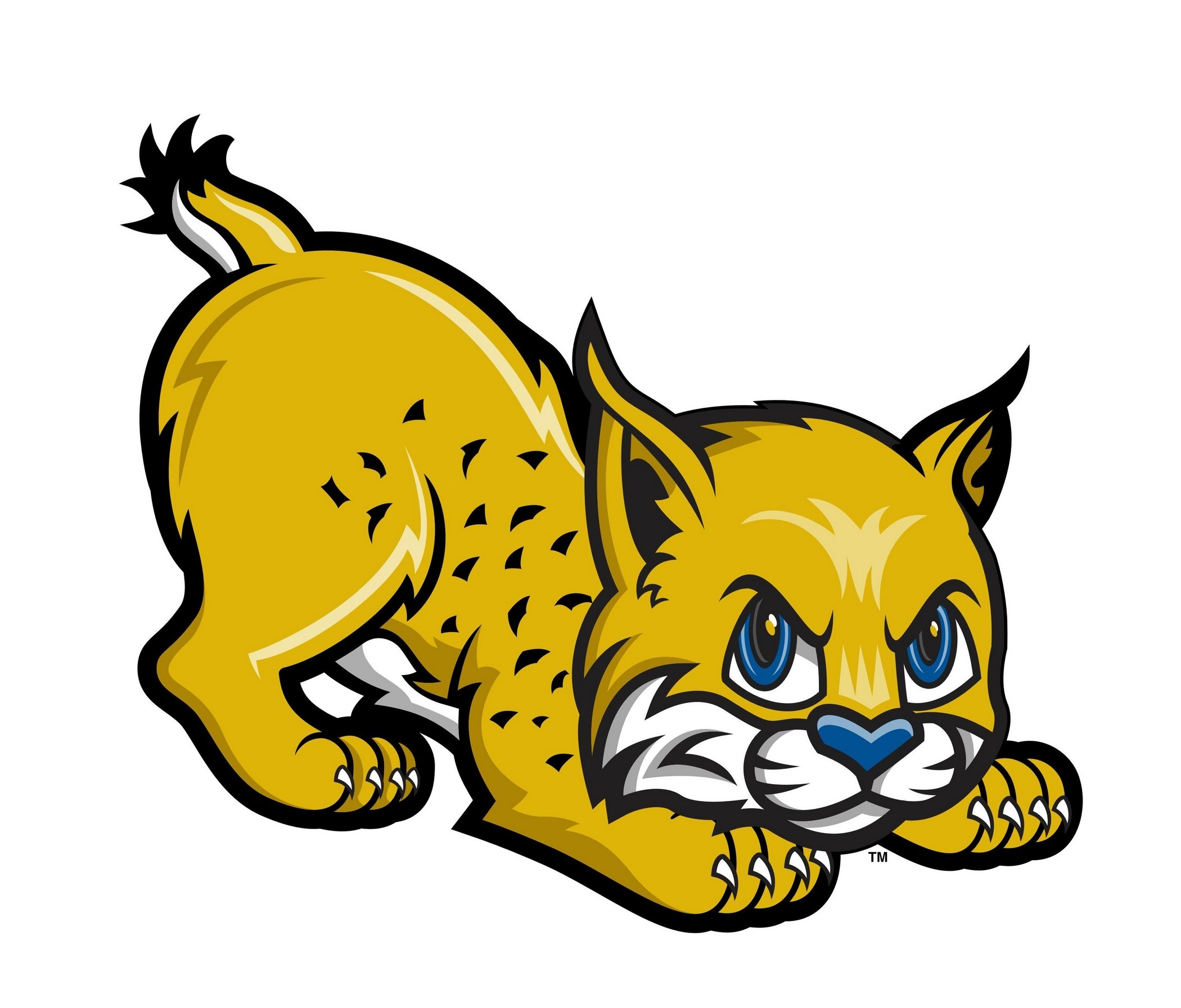 Unique collection digital q. Bobcat clipart eyes