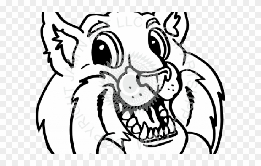Png download pinclipart . Bobcat clipart eyes