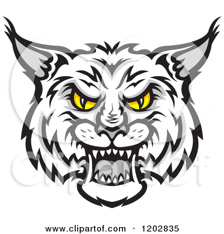 Free download best on. Bobcat clipart eyes